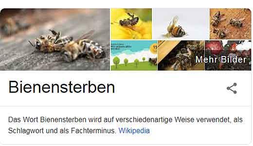 Bienensterben stoppen