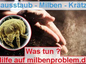 Hausstaub Milben Kraetze ausführliche Info auf Milbenproblem.de Ratgeberseite über Skabies
